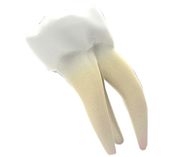 tandarts wortelkanaalbehandeling BRielle